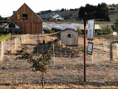 Templeton Valley Farms
