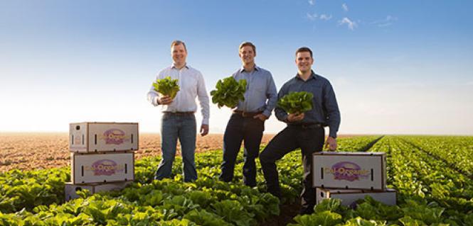 Cal Organic-Farms